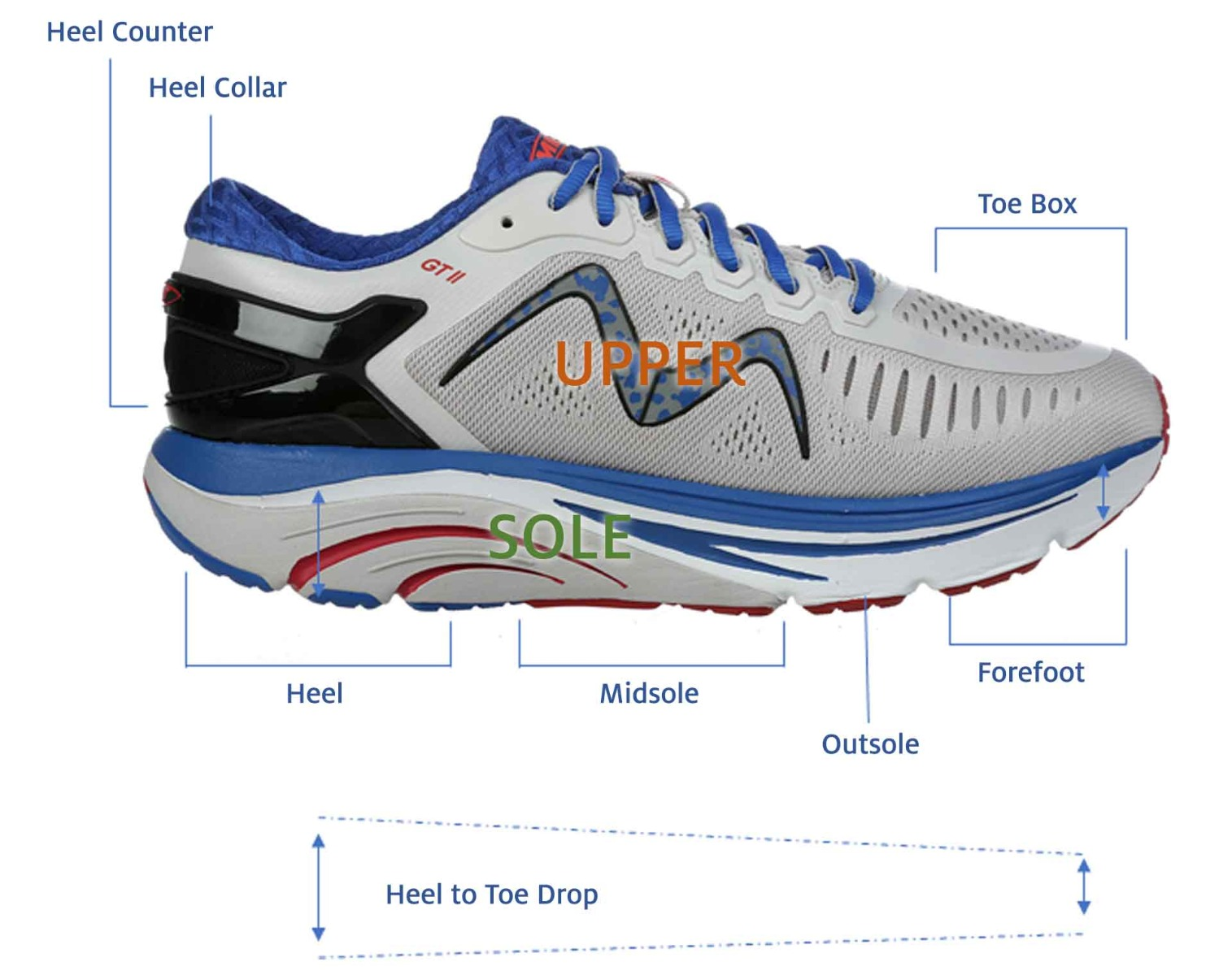 Diagram of the Parts of a Shoe